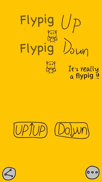 Crazy Flypig