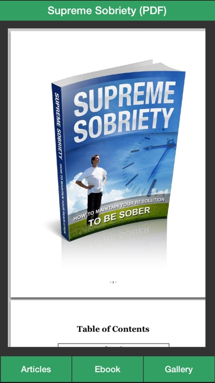 Sobriety Guide - Succeeding at Your Sober Resolutions!