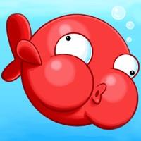 Codes for Blowfish Meets Meteor: A Brick-Breaker Adventure Hack