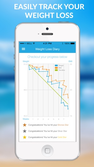 the 12 week weight loss challenge calorie tracker with food diary