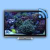 Aquarium on TV for Chromecast