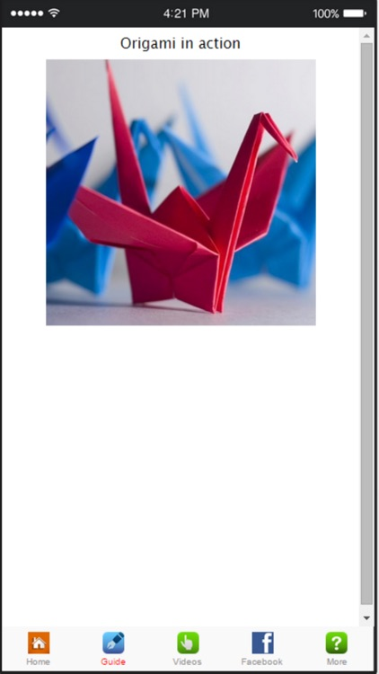 How To Make Origami - Learn Origami Folding Instructions screenshot-3