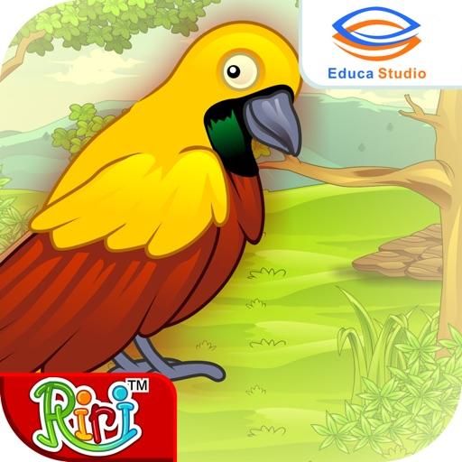 Unduh 97+ Foto Gambar Burung Cendrawasih Kartun HD Paling Unik Gratis