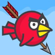 Activities of I Hate Birds