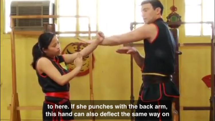 Wing Chun Techniques screenshot-4