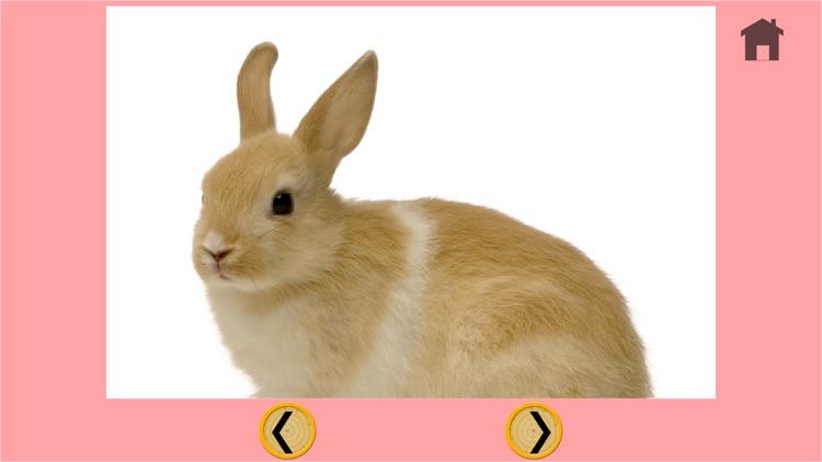 rabbits and my kids - free game screenshot-4