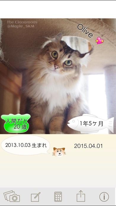 ニャンコいくつ?愛猫の年齢を計算して写真で保存!紹介画像1
