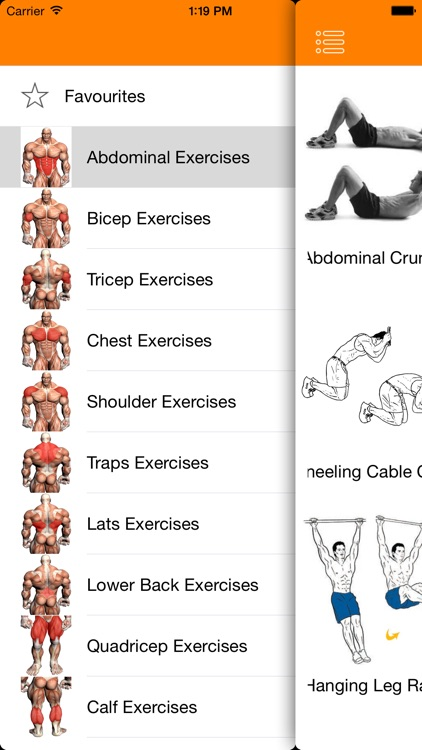 Complete Gym Guide Lite
