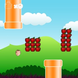 Flappy Everything