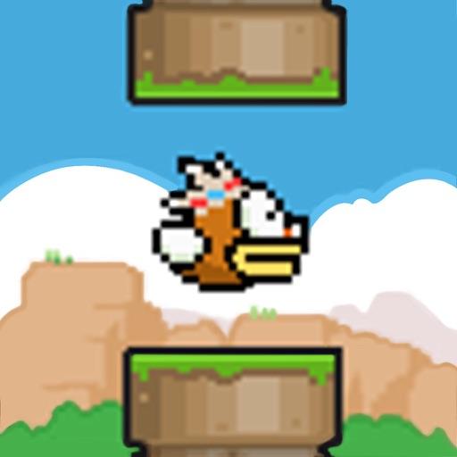 Bird, Go!