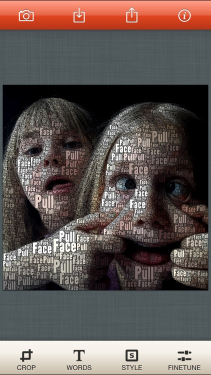 WordFoto screenshot-3