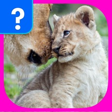 Activities of What's The Baby Animal? - The Cutest Animal Picture Word Trivia Game for EVERYONE!