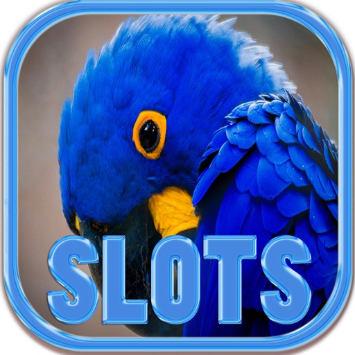 The Hyacinth Macaw Slots - FREE Las Vegas Casino Spin for Win