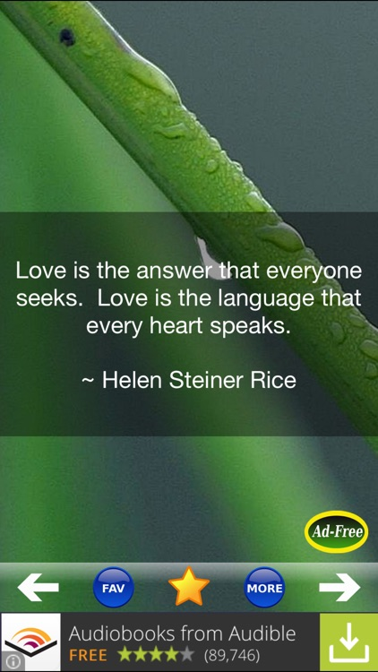 Love Quotes and Sayings! Daily Romantic Valentine's Day Messages 500 for Teens FREE!