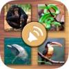 动物的声音为孩子 - 丛林,农场,海洋动物和宠物