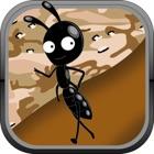 Ant Farm Побег Bug Village icon