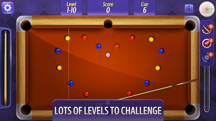 Billiards Master ! screenshot-1