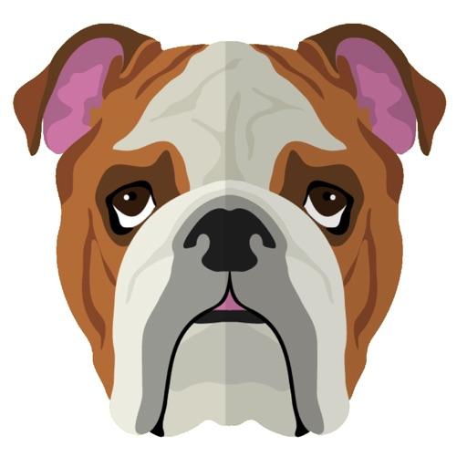 My Bulldog