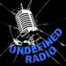 172.Undefined Radio