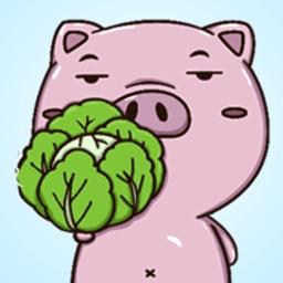 Pig Pigy