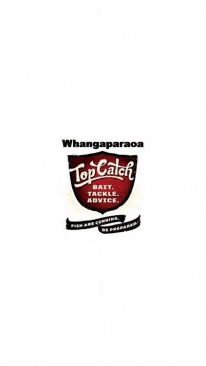 Top Catch Whangaparaoa