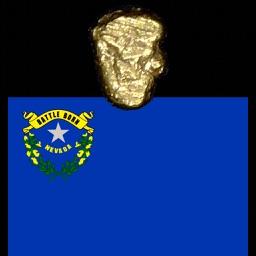 GoldFinderNVPro