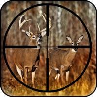 Codes for Real Deer Hunting 2017 Hunting Challenge Rampage Hack