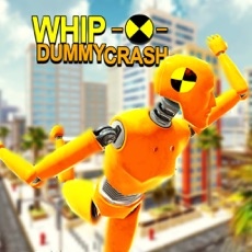 Activities of Whip Dummy Crash
