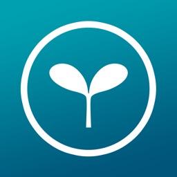 WEBMOBI WEBM Browser app