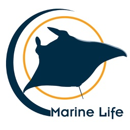 Marine Life - Marine Species Guide