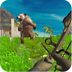 Activities of Bear Hunting: Archer in Jungle 2017