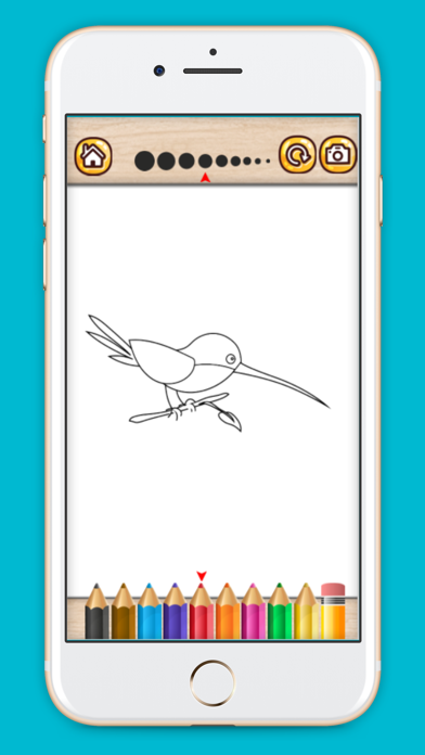 Bird coloring book drawing painting games for kids screenshot four