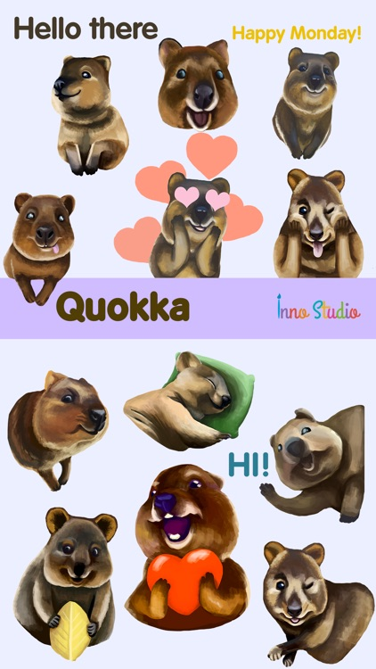 Quokka - The Happiest Animal in the World