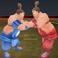 Codes for Sumotori Wrestle Dreams 3D Hack