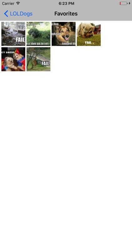 LOLDogs Premium- Dog / Puppy LOL & Fail Pics