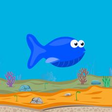 Activities of Fish-e