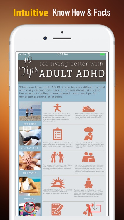 Adult ADHD Guide-Life Strategies