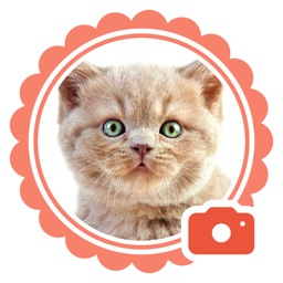 Pet Camera - funny stickers for cat and dogs