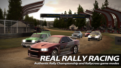 Screenshot from Rush Rally 2