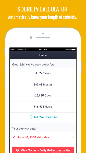 AA App 12 Steps Alcoholics on the App Store