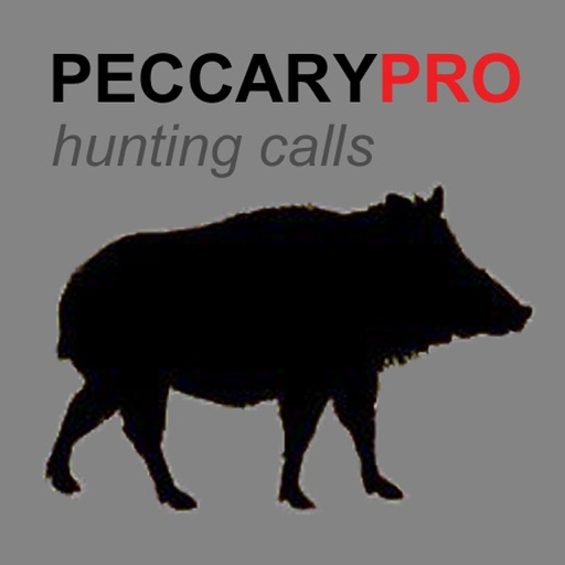Peccary Calls and Peccary Sounds for Hunting