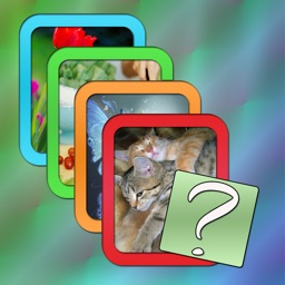 One Word and Four Pictures-Puzzle Game