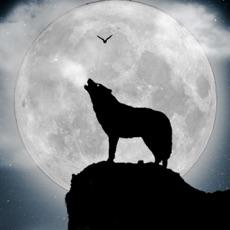 Activities of Werewolf Horror Wallpapers & Backgrounds