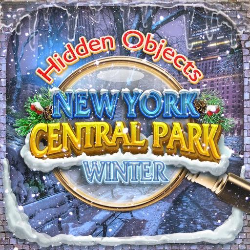 Central Park New York Winter - Hidden Object Time