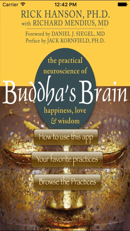 Buddha's Brain screenshot-0