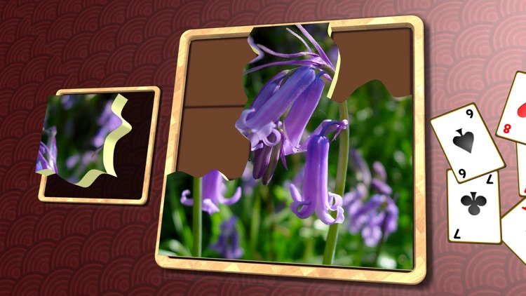 Jigsaw Solitaire Plants screenshot-3