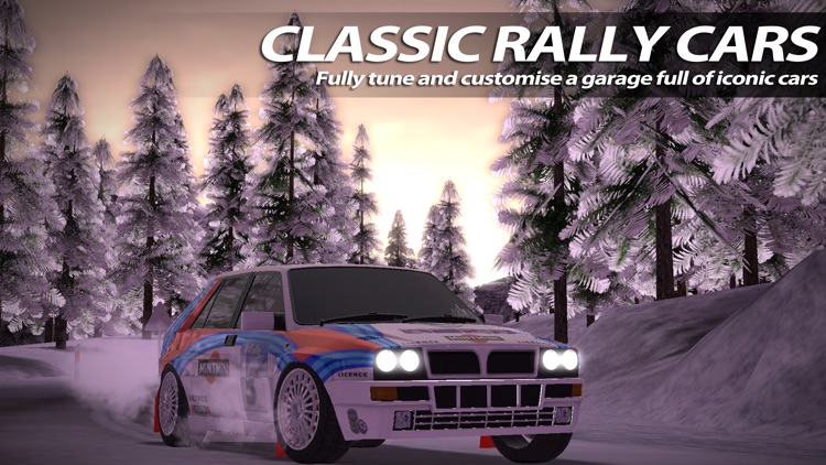 Rush Rally 2 screenshot-3