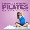 The Pregnancy Pilates Videos with Caroline Sandry - iPhoneアプリ