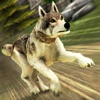神奇狼人和狗狗冲突 - 我的梦幻动物园跑酷3D