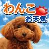 みんなのわんこ天気〜天気予報+犬写真で毎日に少しほっこり〜
